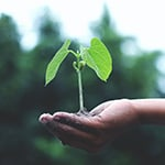 Earth Week: ontdek hoe je duurzamer en voordeliger kunt leven
