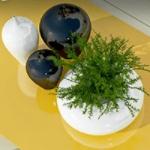 VidaXL kortingscode | Pak nu 10% korting op Huis & Tuin producten
