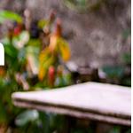 Bij VidaXL krijg je nu hoge kortingen op huis- en tuinproducten voor het voorjaar + GRATIS verzending